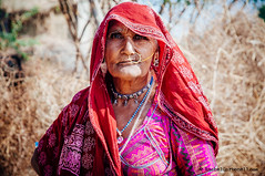 Portrait of a tribal woman in a small village around Jodhpur, Rajasthan, India (achel cabonell) Tags: old travel portrait woman india beautiful earings rural countryside costume asia dress indian traditional tribal jewellery clothes viajes elderly nosering tribe ethnic sari rajasthan fabrics jodhpur rabari rajasthani travelphotography documentaryphotography necklance fotografiadocumental fotografiadeviajes rachelcarbonell