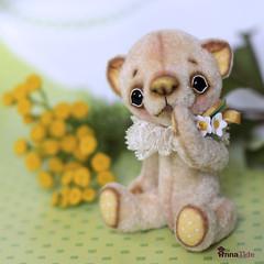 Romi by Anna Tide14 (Anna T.) Tags: teddy ooak teddybear teddybr teddysbyannatide