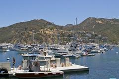 Harbor Patrol at Gas Station (Pak T) Tags: california boats harbor catalina avalon zuikodigital harborpatrol olympus1260mm