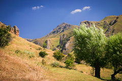 (azem) Tags: trees summer sky mountain tree nature clouds landscape wind hill blowing valley kosova kosovo balkans