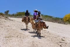 caribbean 2012 (luca.gargano) Tags: travel haiti caribbean antilles caribe gargano lucagargano ayti cotedefer