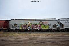 BAD HBAK (FreshySnapper) Tags: railroad art train graffiti artwork paint graf rail trains rails spraypaint graff railart