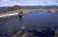 Tarn on top Mt Ossa (mattfrancey) Tags: mountain tasmania nationalparks cradlemountain overlandtrack