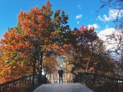 At the Esplanade (AnthonyTulliani) Tags: bridge fall boston foliage iphone iphone5 vsco iphoneography vscocam vscolover