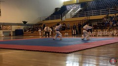 stefanou_15_5_2016_knockdown_4