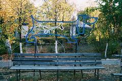 2015-09-29 10.22.31 1 (anastasiya_klenyaeva) Tags: sky nature yellow russia autmn     saratov vsco vscocam vscorussia vscosaratov