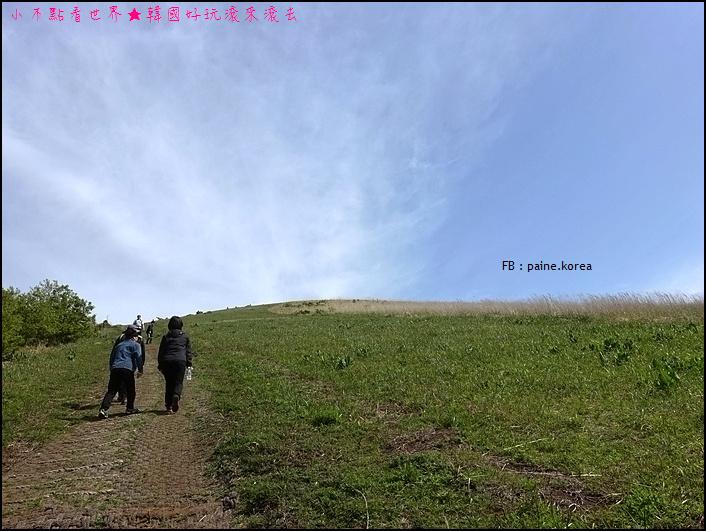 濟州晨星岳 (7).JPG