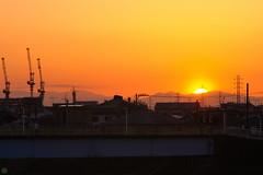 20160512-D7-DSC_0657.jpg (d3_plus) Tags: street sunset sea sky bicycle japan river cycling nikon scenery outdoor dusk daily telephoto ragnarok   tele streetphoto yokohama nikkor      dailyphoto  70210 thesedays pottering        70210mm   70210mmf4    70210mmf4af 702104  d700 kanagawapref  nikond700  aiafnikkor70210mmf4s 70210mmf4s