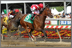 Go Maggie Go wins the Black-Eyed Susan (Spruceton Spook) Tags: horses horseracing blackeyedsusan pimlico gomaggiego