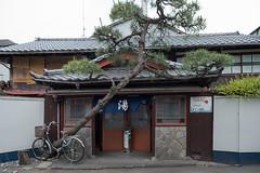 Japanese public bath house (kasa51) Tags: door building window japan pinetree alley sento kanagawa tsujido noren    publicbathhouse