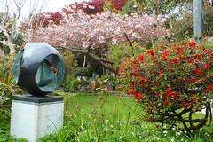 Barbara Hepworth Museum. Sculpture Garden (Pippa Robins) Tags: sculpture cornwall stives barbarahepworth barbarahepworthmuseum spherewithinnerform