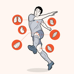 Futebol (Rodrigo Damati) Tags: info ilustrao vetor ilustra infografia vetorial infogrfico