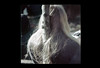 ss23-57 (ndpa / s. lundeen, archivist) Tags: people woman color film girl boston hair massachusetts nick longhair slide blond blonde slideshow mass 1970s youngwoman bostonians bostonian dewolf early1970s nickdewolf headofhair photographbynickdewolf slideshow23
