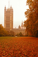 Morning mist over the Palace of Westminster (amelia.seddon) Tags: london housesofparliament autumn palaceofwestminster