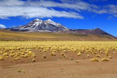 Ruta del desierto (Asterivaldo) Tags: chile sanpedrodeatacama desiertodeatacama desertodeatacama atacamadesert rutadeldesierto asterivaldo