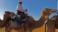 Me on a Camel in the Sahara (macloo) Tags: travel camping sahara trek desert morocco camels