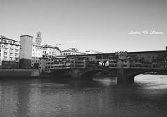 Ponte Vecchio II (ambcroft) Tags: travel blackandwhite bw travelling florence nikon memories firenze ricordi viaggio biancoenero pontevecchio viaggiare nikond3000