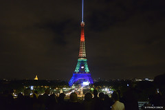 Hommage suite  la tuerie d'Orlando, Paris (Franck Simon) Tags: gay paris lights orlando rainbow flag eiffeltower lgbt hommage drapeau tuerie homosexualite