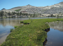 Marshy shoreline of Lower Isberg Lake (kennsrempel) Tags: hudsonianzone anseladamswilderness lowerisberglakemaderacountycalifornia