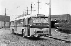221 SERVICE SPECIAL (brossel 8260) Tags: bus belgique liege stil