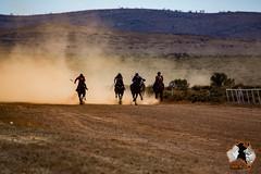 20160423-2ADU-018 Pferderennen in Yunta