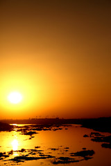 ahmedabad evening (Sonali Dalal) Tags: sunset orange reflection water river evening sabarmati ahmedaabd