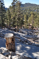Steep winding trail at the San Jacinto Mountains in Palm Springs (Blue Rave) Tags: hills mountains nature trees palmsprings park pathway vanishingpoint trail path california hike hiking mountsanjacinto mountsanjacintostatepark sanjacintomountains