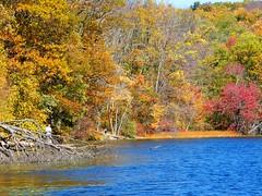 Spring Looks Like Autumn (Stanley Zimny (Thank You for 20 Million views)) Tags: autumn people lake color tree men garden season botanical spring fishing skylands