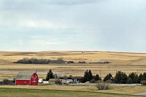 Farm Near Warner, Alberta