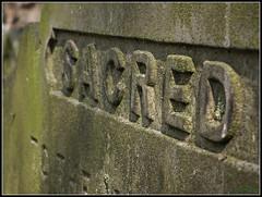 Sacred (Steve.T.) Tags: grave death moss fuji dof rip headstone tombstone sacred gravestone churchyard churchstreet essex witham bold inscription finalrestingplace hs10 stnicholaschurchwitham