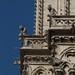 Gargoyles of Notre Dame Paris