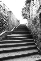 Stairs behind Mihrimah Sultan Mosque, skdar, Istanbul (SvKck) Tags: turkey trkiye turky istanbul turquie trkei shore turkije turquia anatolia constantinople turqua uskudar byzantium turchia anatolian turkic skdar torke turcja turkiya turkye anadolu turkie turcia  turcija yakas  islambol republicofturkey stamboul dersaadet islambul pyitaht turtsiya chrysopolis carigrad   kostantiniyye konstantinupoli knstantinoupolis thegreatcity queenofcities kushtandina tsargrad kustantiniyyah landoftheturks