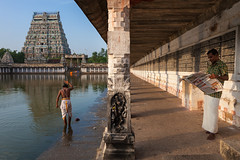 Read, Chidambaram (Marji Lang Photography) Tags: life travel two people sculpture india men statue architecture composition religious temple reading vanishingpoint worship place image geometry indian pillar documentary stonecarving scene carving symmetry holy symmetrical priest dailylife shiva hindu hinduism nataraja indien tamil puja tamilnadu mandir hindutemple ordinary shivatemple kovil gopuram holycity brahmin symétrie tamoul travelphotography chidambaram saivites pillier indianmen indianpeople shivadance ef247028l indiansubcontinent symétrique canoneos5dmarkii natarajatemple travelanddocumentaryphotography marjilang thillainatarajahtemple சிதம்பரம்கோயில் chidambaramthillainatarajarkoothankovil eastcentraltamilnadu