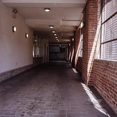Hall (DeShaun Craddock) Tags: newyorkcity 6x6 brooklyn mediumformat landscape analogphotography filmphotography portra400 kodakportra400 analoguephotography rolleiflexautomatmx rolleiflexautomatk4a rolleiflextype4