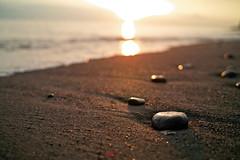 a stone (nipomen2) Tags: sea japan stone sigma chiba  futtsu  dp2