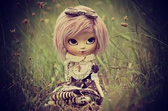 Rhapsody ~ (Nickocha) Tags: france eyes odd pullip rhapsody furwig amarri nickocha