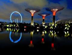 Garden by The Bay (nungshardi) Tags: lights singapore nightscene reflexion worldtrekker flickrawa gardenbythebay flickrstruereflection1 flickrstruereflection2 flickrstruereflection3 flickrstruereflection4