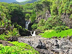 Maui (Plain Adventure) Tags: hawaii maui sevensacredpools oheogulch haleakalanationalpark