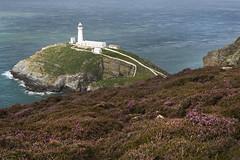 South Stack, Holy island (Ianmoran1970) Tags: light lighthouse house holiday wales island coast holy welsh beacon holyisland angelsey northwales southstack ynyslawd ianmoran ianmoran1970