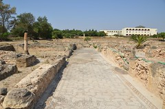 Roman-Byzantine site of Pupput (1) (Prof. Mortel) Tags: roman tunisia byzantine pupput