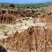 Desierto de la Tatacoa (12)