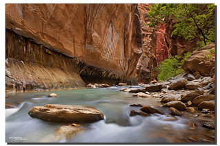 Contemplation in the Narrows, Zion National Park, Utah