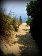 Middlesex DE ~ path to the beach (karma (Karen)) Tags: light shadows fences beaches grasses delaware oceans bushes middlesex