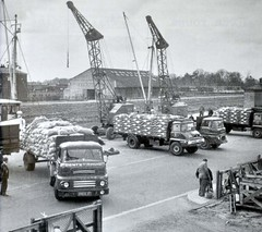 English Haulage in The Early Sixties (colinfpickett) Tags: ford truck crane famous 1960s comet leyland trader classictrucks vintagetrucks