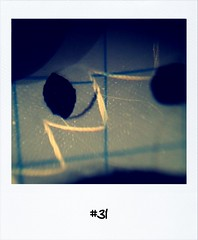 "#DailyPolaroid of 29-10-12 #31 • <a style=""font-size:0.8em;"" href=""http://www.flickr.com/photos/47939785@N05/8159081794/"" target=""_blank"">View on Flickr</a>"