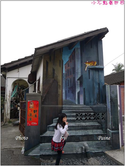 雲林虎尾屋頂上的貓 (20).JPG