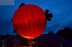 Bird Risen (errolgc) Tags: newzealand bird balloon hamilton universityofwaikato balloonsoverwaikato2014 cameronsphere105n333abangry nightglow2014