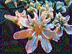 Parsnip3Dream (Bugldy99) Tags: flower photomanipulation manipulated surrealism surreal manipulation parsnip photomanipulated dreamscope fotomanipulation fotomanipulated photosurrealism fotosurrealism
