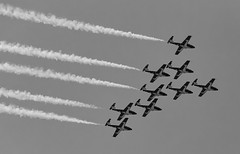 Snowbirds Ahoy (145) (Beau Finley) Tags: flyover canadianforces airforce planes aircraft airplane formation washingtondc monochrome districtofcolumbia beaufinley royalcanadianairforce moosejaw 431 dcfocused 365 project365 sky contrail contrails