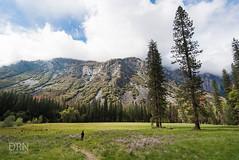 Yosemite - 05.08.16 (dunksrnice) Tags: jr yosemite rolo 2016 tanedo dunksrnice wwwdunksrnicenet rolotanedo dunksrnicenet rolotanedojr rtanedojr